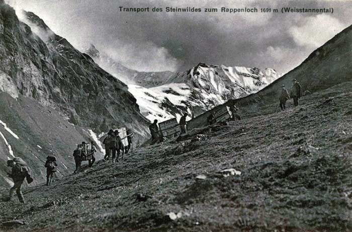 Am 8. Mai erfolgt die erste Aussetzung von Steinböcken im Weisstannental im St. Galler Oberland. Die Steinböcke waren in der Schweiz seit langem ausgerottet.