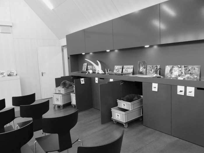 Ein Geschenk der Ria und Arthur Dietschweiler Stiftung ermöglichte den Bau des Wildpark – Hauses. Der Schulungsraum bietet vielfältige Informationsmöglichkeiten für Schulen und Gruppen.