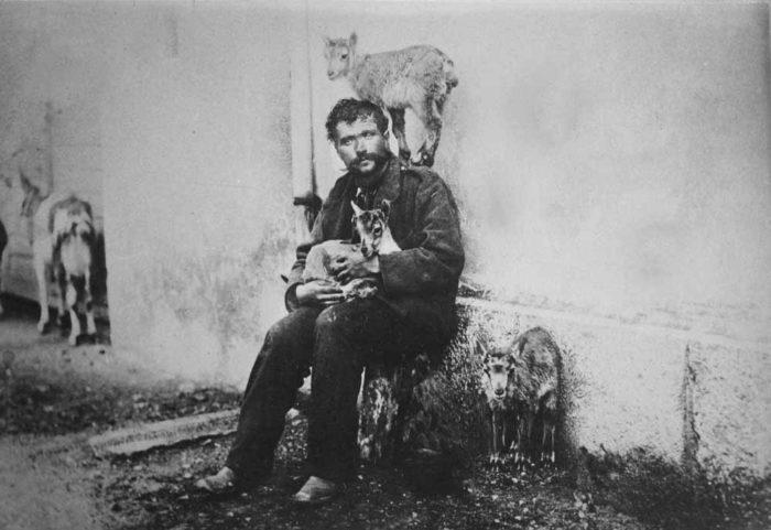Joseph Berard, mit drei Steinkitzen und einer Hausziege.